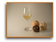 Weißweinglas v. Schott Zwiesel